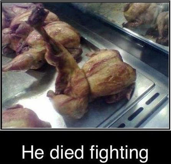 the chick died fighting
