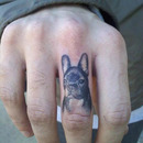 dogrintattoo