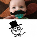 Schnulli like a sir